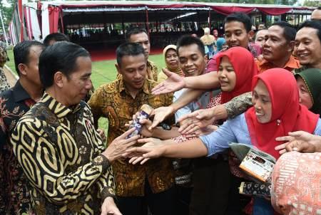 Adi-Panglima Seorang Jokowi
