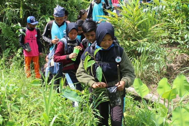 Ekspedisi Menjelajahi Hutan Sembari Menanam Pohon di Kawasan Penyangga Gunung Palung