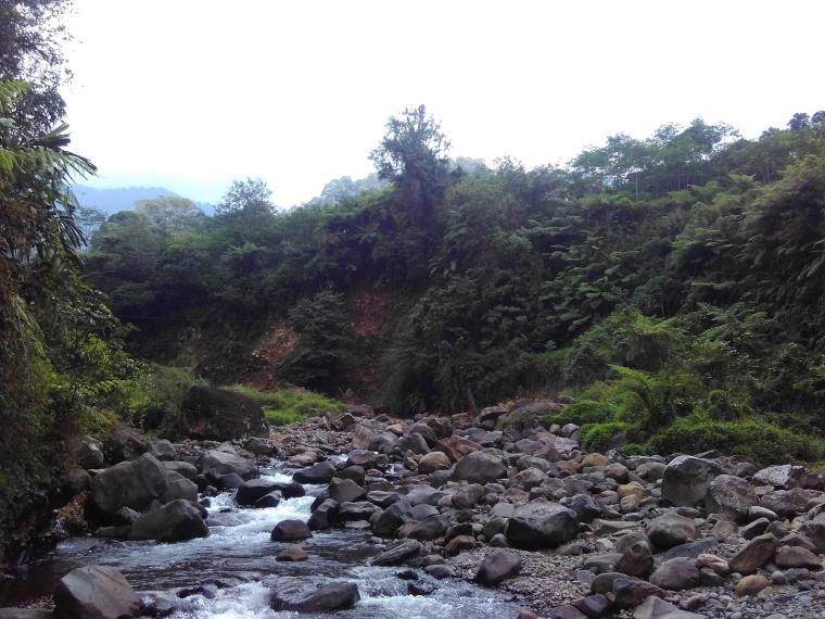 Petungkriyono, Sejak dan Segar dengan Panorama Alamnya