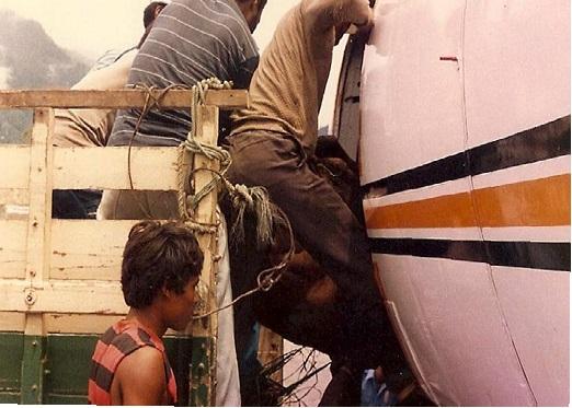 Sapi Naik Pesawat