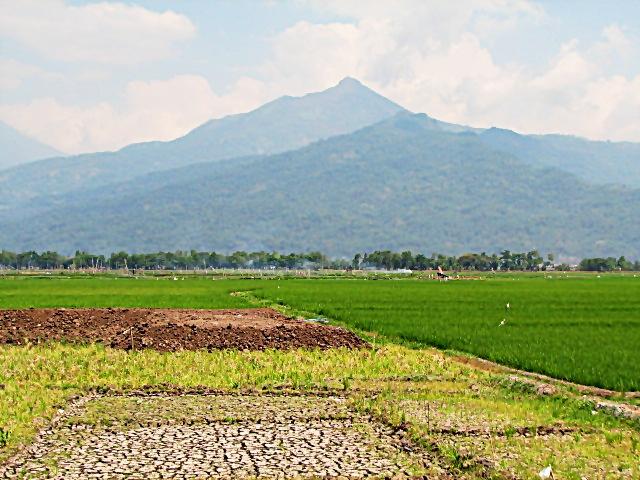 Kampung Rawa; Resensi dari Seorang Pengunjung