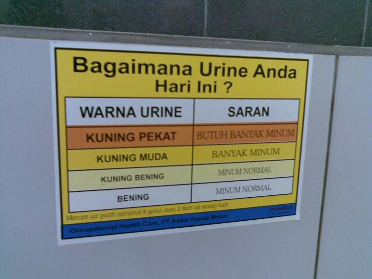 Bagaimana Warna Air Kencing (Urine) Yang Sehat?