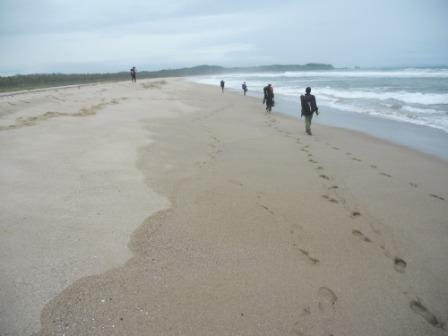 Pesona Pantai Sawarna