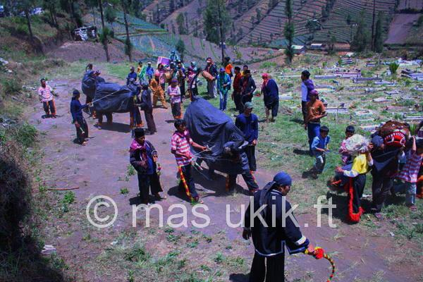 Bantengan: Seni Tari Tradisional dari Malang
