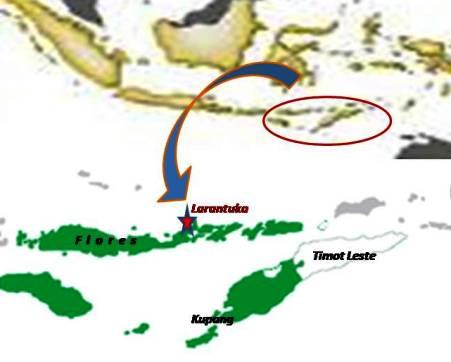 Flores dan Timor Leste Jajahan Portugis, Ini Bukti Sejarahnya