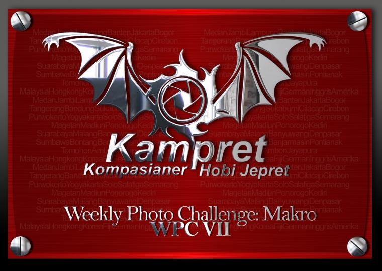 Weekly Photo Challenge: Macro Photography