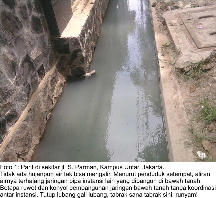 Mampukah Jokowi Mengatasi Banjir Jakarta?