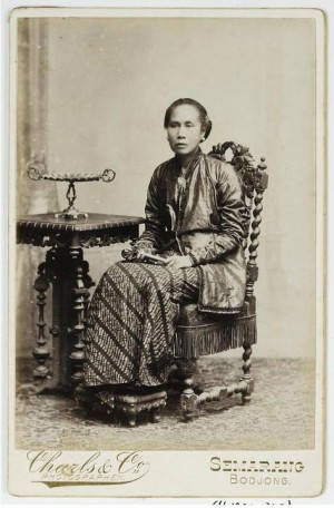 kartini jendela modernisasi indonesia oleh anton dwisunu