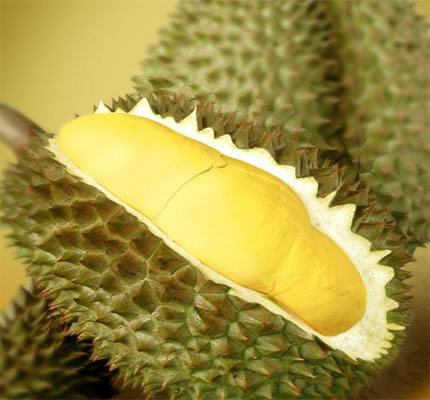Durian Masih Menjadi Idola Masyarakat.