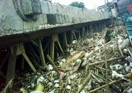 Cara Membersihkan Sungai Ciliwung