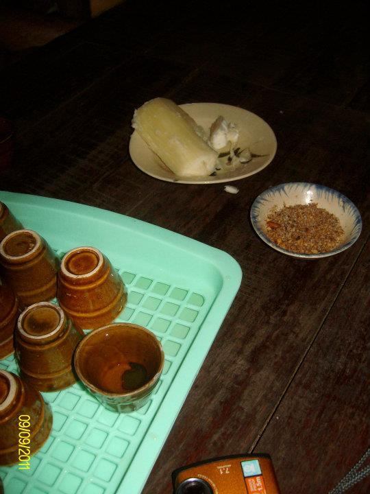 Ubi Kayu (Cassava)