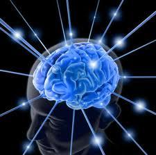 Tips Pembelajaran Berbasis Kinerja Otak