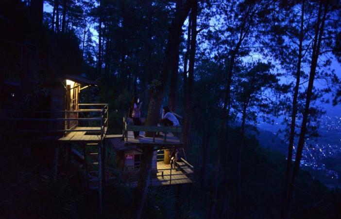 Unik, Wisata Alam Sediakan Hotel Kayu di Atas Pohon