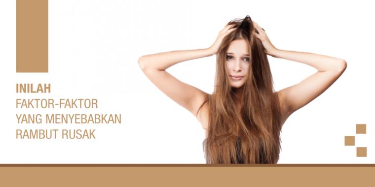 Inilah Faktor-faktor Yang Menyebabkan Rambut Rusak oleh Admin ... 6433e06e70