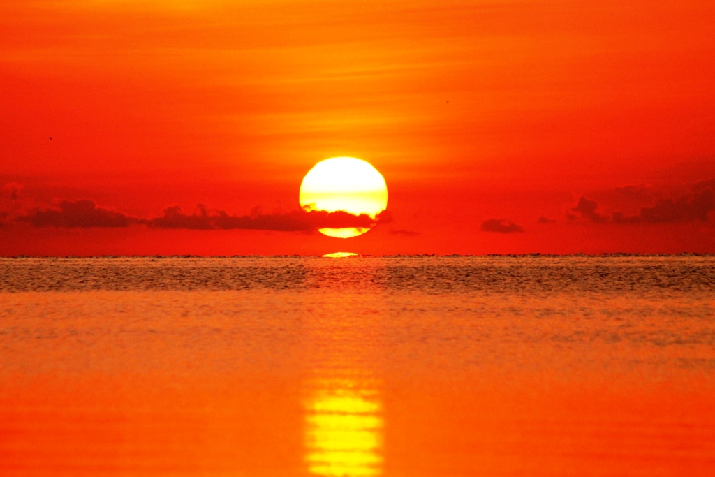 describe the sunset essay Descriptive essay about sunset beach 752 words 4 pages ever since sunset beach has been officially opened to the public, there has been a drastic increase of tourists present.