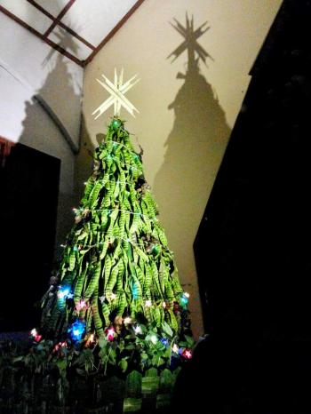 Pohon Natal Petai Adakah Kisah Pembingkainya Halaman All