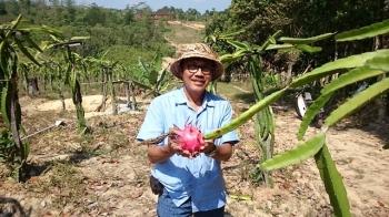 Asyiknya Petik Buah Sendiri Di Agro Lestari Balikpapan