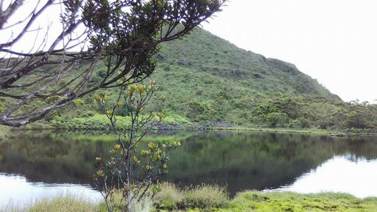 Mendaki Gunung Emas Di Negeri Ophir Oleh Sutomo Paguci Halaman All