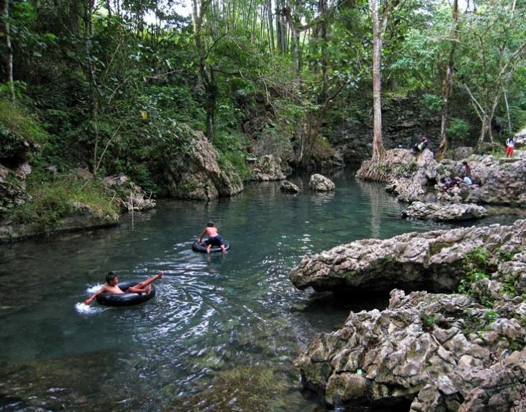 Berburu Penampakan Ikan Massapi Purba di Kolam Alami Tilanga!