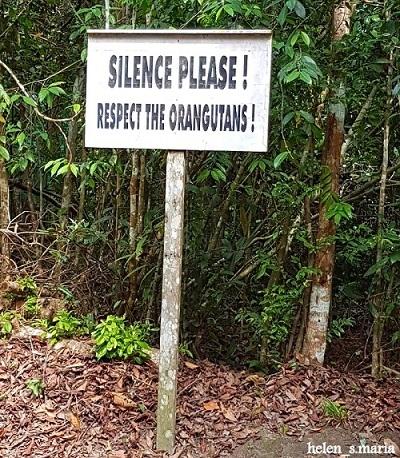 Tanjung Puting, Permata Borneo