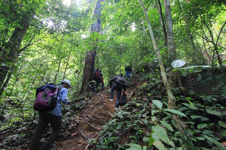 Asyiknya Fieldtrip Bersama Para Pihak di Hutan Lubuk Baji Kawasan Penyangga TNGP