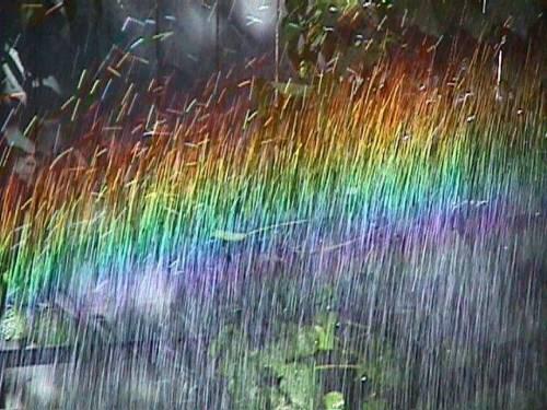 Hujan Pagi, dan Cerita tentang Bidadari
