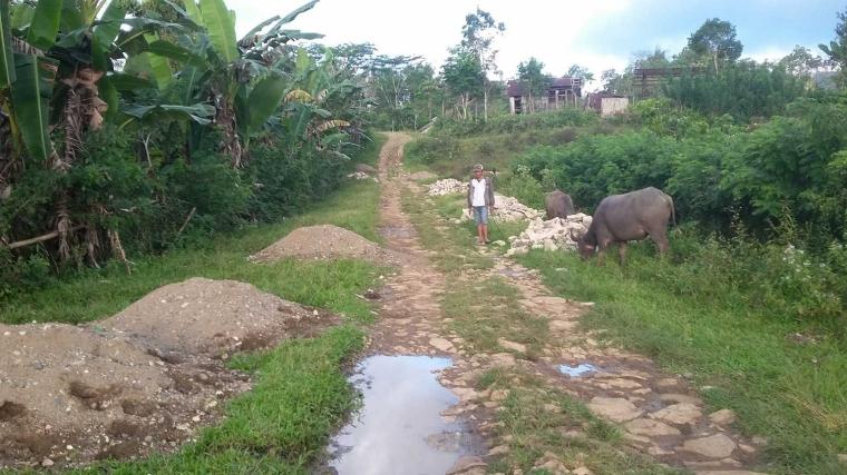 Kepala Desa Watu Manggar Dipolisikan Oleh Tokoh Adat Gendang Londang
