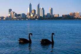 Menikmati Pesona Swan River