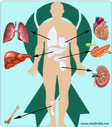 reversing diabetes by an organ transplant the results of research in toronto