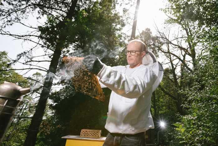 Kotaminasi Pestisida pada Madu Semakin Meluas