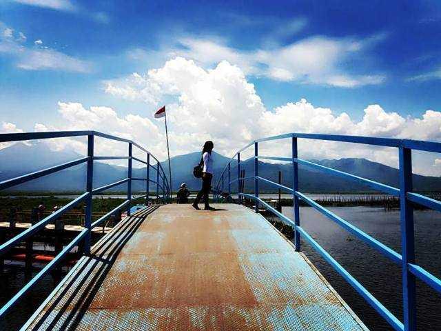 Bahan Bakar Ramah Lingkungan Kurangi Polusi
