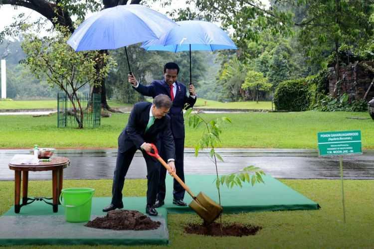 Penyambutan Tamu Kenegaraan dengan Menanam Pohon