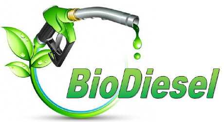 Biodiesel Mikroalga, Kebutuhan atau Obsesi?