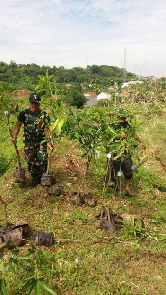 Pandam IV/Diponegoro Turut Serta Lestarikan Alam