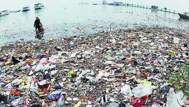 Kontribusi  demi Lautku Bebas Sampah