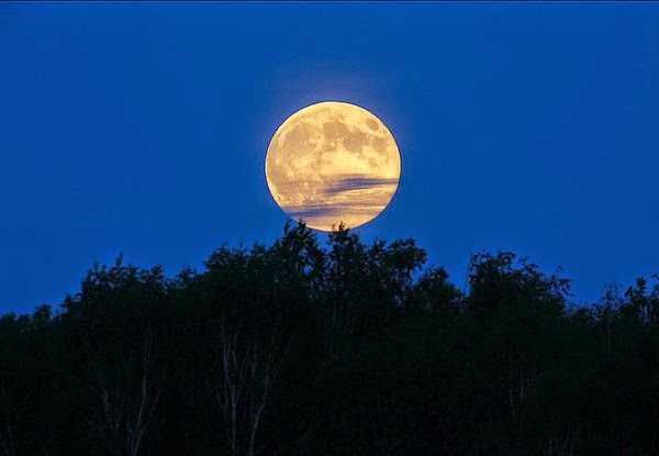Kenapa Tadi Malam Bulan Terlihat Terang dan Besar?