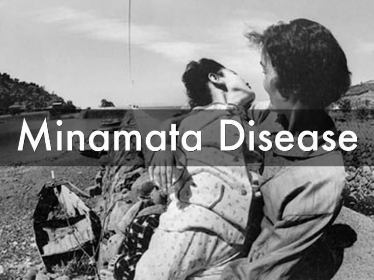 Penyakit Minamata Jangan Terulang di Indonesia