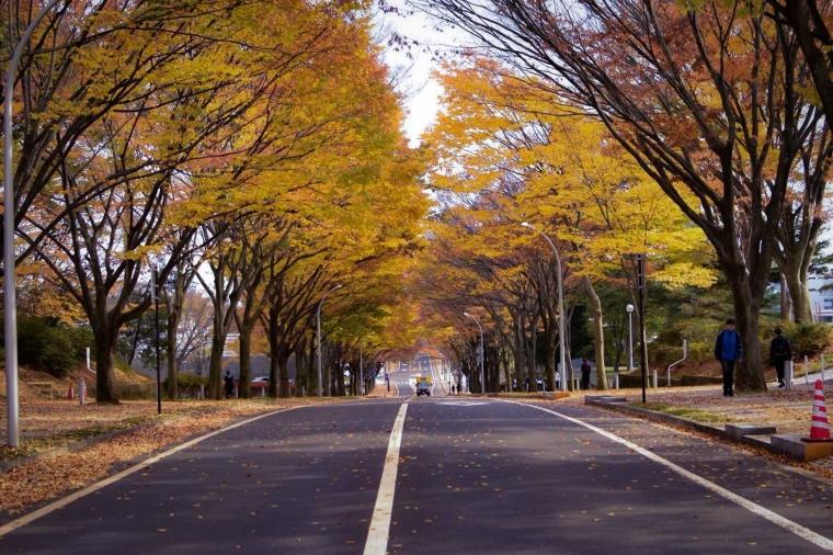 Gudang Pembelajar di Kota Sendai, Jepang
