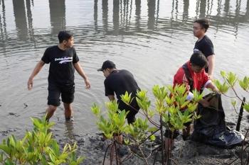 kepedulian remaja terhadap lingkungan seperti perkembangan tumbuhan mangrove 5a49b6c3caf7db63d843f3f2