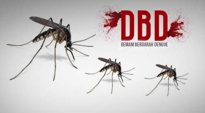 Gejala Demam Berdarah serta Pencegahan yang Tepat