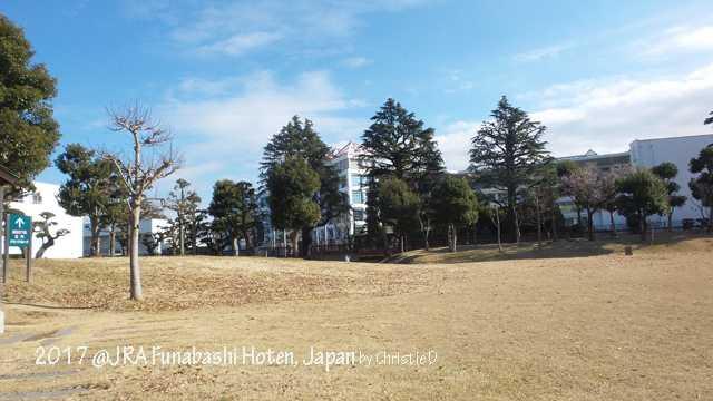 Bukan Sekadar Berkuda di Funabashi Hoten