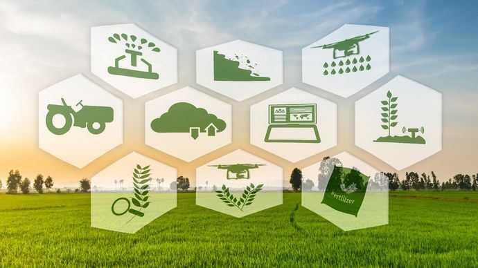 Tantangan dan Peluang Industri Makanan dan Minuman