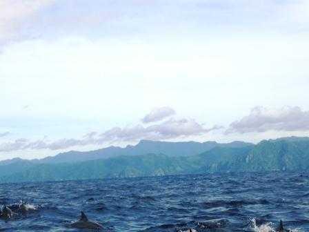 Menikmati Lumba-lumba di Teluk Kiluan