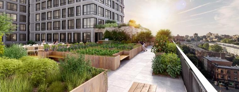 Quot Urban Farming Quot Solusi Pertanian Di Perkotaan