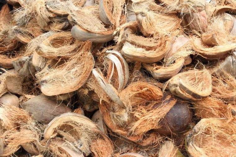 Membuat Pupuk Organik dari Sabut Kelapa