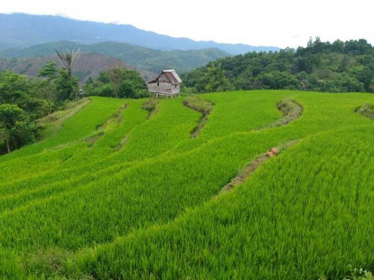 Bonto Payung, Surga yang Terserak di Kaki Bukit Pujananting