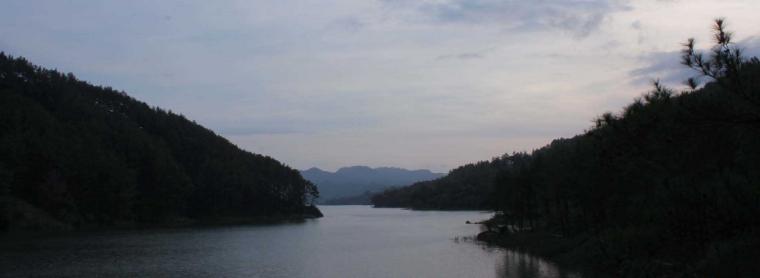 Menikmati Perpaduan Hutan Pinus dan Danau Buatan di Wisata Ranugumbolo
