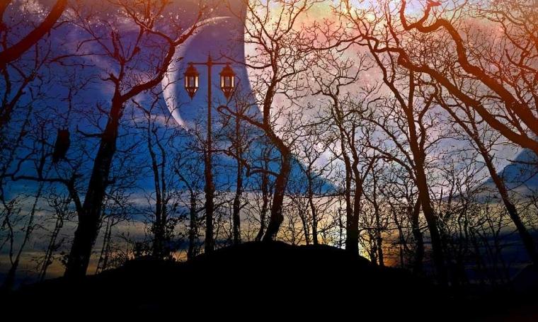 Puisi | Bulan Terjatuh di Pekarangan