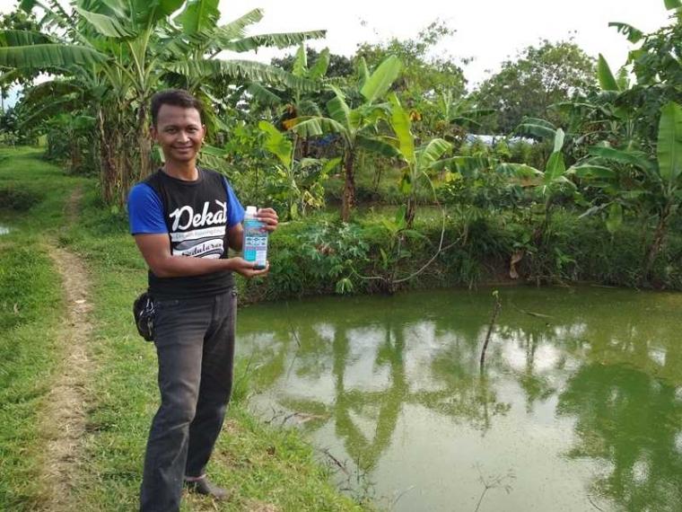Cara Mengatasi Ikan Gurame Yang Stres Halaman All Kompasiana Com