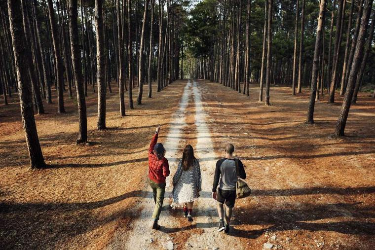 Mengindahkan Narasi Tunggal dapat Sebabkan Pembentukan Persepsi yang Menyesatkan